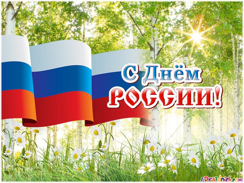 Отчет о проведении праздника «12 июня — Дня России» в дошкольной группе «Смешарики»